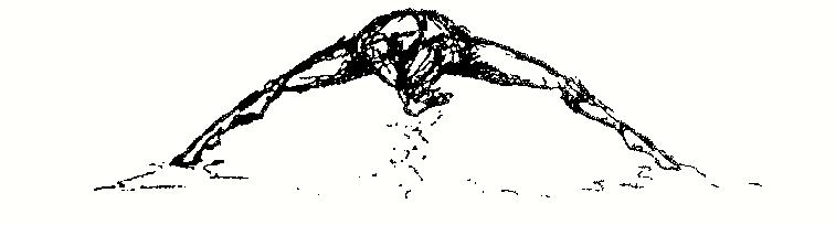 nathantrice/rituals logo